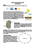 Plant/Animal Life Cycle and Parts of Plant/Seed Study Guide