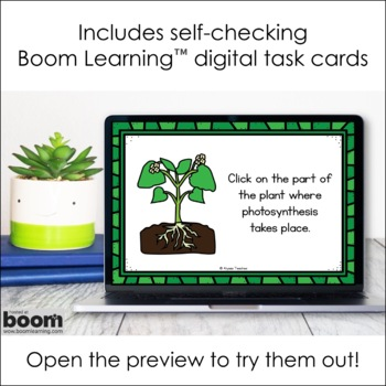 Plant/Flower Anatomy & Life Processes Task Cards (SOL 4.4)