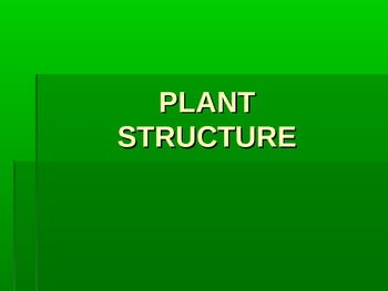 Plant/Flower Structure