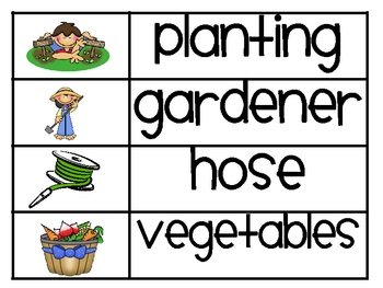 Plant/Spring Word Wall Words