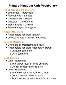 Plantae (Plant) Kingdom Unit Vocabulary Lesson Plan