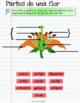 Plantas Cuaderno Interactivo Digital: Bilingual Plants for Google Drive