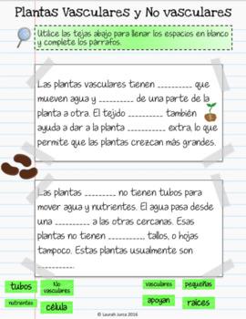 Plantas Cuaderno Interactivo Digital: Bilingual Plants for Google®