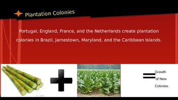 Plantation Colonies APUSH