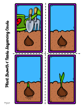 Planter une tulipe ❀ French Procedural Writing & Sequencing