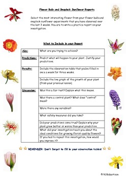 Planting Flowers Science Lesson Five