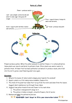 Planting Flowers Science Lesson Two
