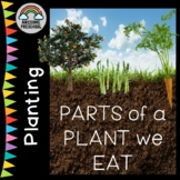 Planting/Gardening unit/study - Parts of the Plant we Eat