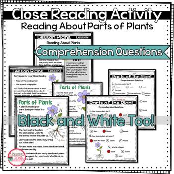 Planting Seeds Activities   Plant Journals