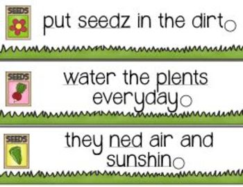 Planting Seeds of Learning! A Garden Variety of Learning about Plants and Seeds!