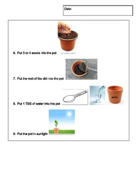 Planting Seeds with Visuals