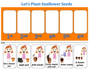 Planting Sunflower Seeds (Sequencing)