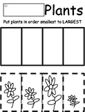 Planting Theme Preschool Cut and Paste Sizes Activity