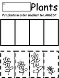 Planting Theme Preschool Cut and Paste Sizes Activity