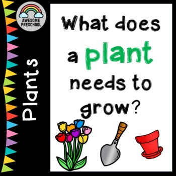 Planting - What plants need