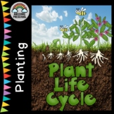 Planting/Gardening unit/study - Life Cycle of a Plant Sequencing