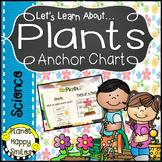 Plants Anchor Chart