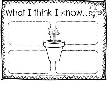 Plants Nonfiction Research Unit