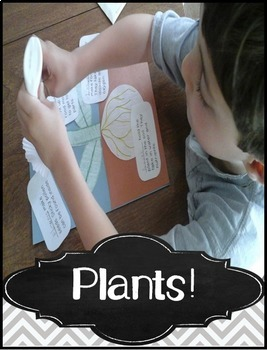 Parts of a Plant Craft & Plants Activities