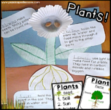 Parts of a Plant Cut and Paste | All About Plants Worksheets