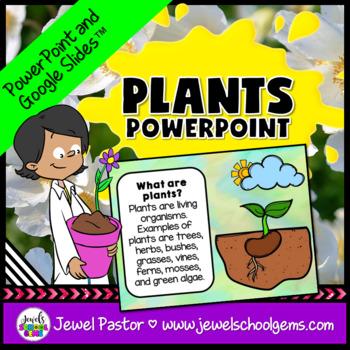 Plants Activities (Plants PowerPoint)