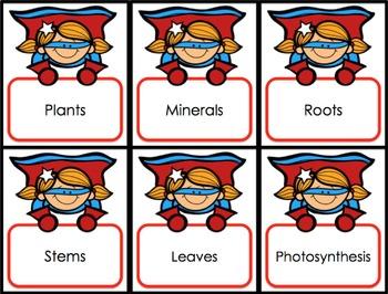 Plants Activities: 6 Plants Games
