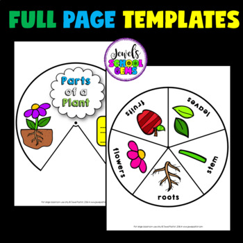 Plants Activities (Plant Parts Craft)