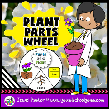 Plants Activities (Plant Parts Craft)