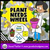 Plants Activities (Plant Needs Craft)