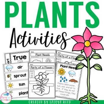 Plants Activities