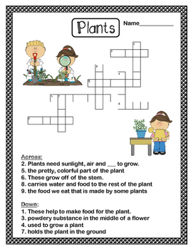 Free plants crossword puzzle by teaching simply tpt for Plant in an english hedge crossword clue