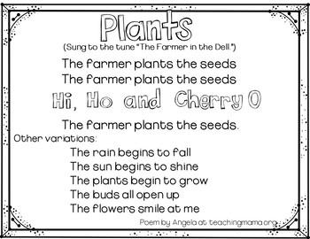 Plants  (A Pocket Chart Activity)