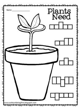 1st Grade Plants ~ A Science Unit