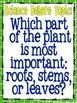 Plants! (A Simple Science Debate) Common Core ELA Aligned