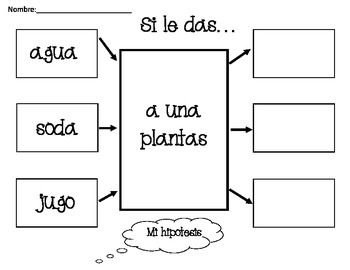 Plants: A Spanish Unit for Kindergarten or 1st Grade