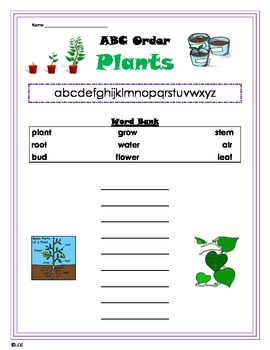 Plants- ABC Order for primary