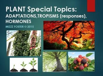 Plants Adaptations, Tropisms, Hormones Power Point