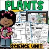 Plants Kindergarten | Plants First Grade | Plant Life Cycl