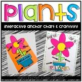 Plants Anchor Chart & Crafitivity