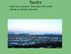 Plants & Animal Interacting - Ecosystems ppt