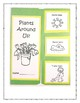 Plants Around Us Lapbook for Kindergarten Through Second Grade