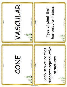 Plants Biology Vocabulary Cards