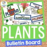 Plants Bulletin Board Set