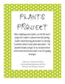 Plants Challenge Project Level 4 DOK Extension Rubric