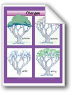 Plants: Changes