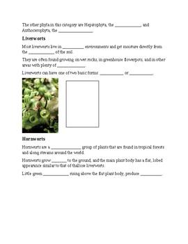 Plants - Classification of plants notes
