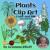 Plants Clip Art