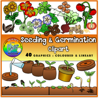 Plants Clipart (Elementary Standards)