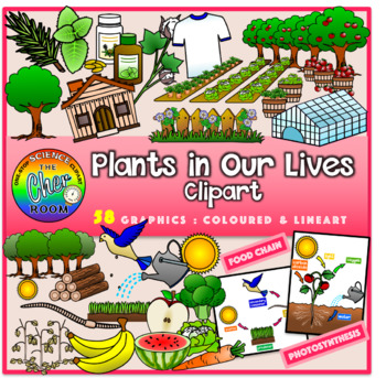 Plants Clipart- Plants in Our Lives