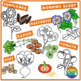 Plants Clipart- Seeding and Germination